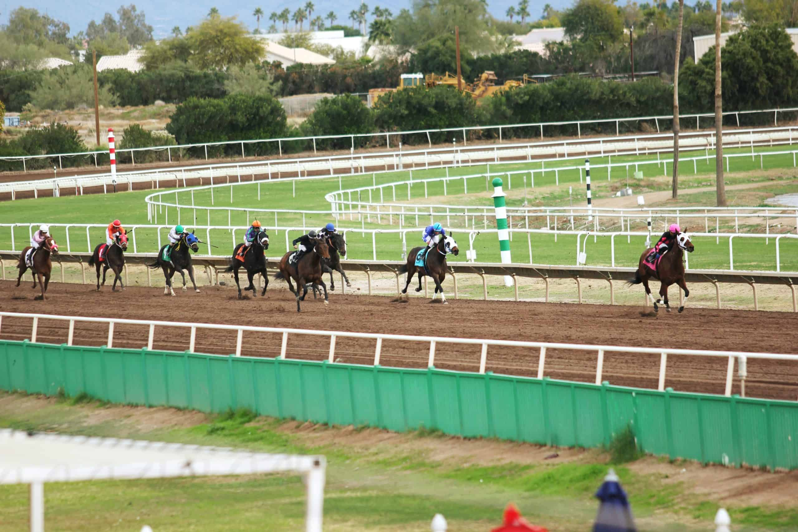 Sporting Life Racing - Your Own Profitable Horse Racing Strategy
